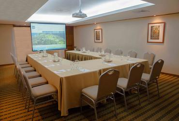 EXECUTIVE III ROOM Sonesta Hotel El Olivar